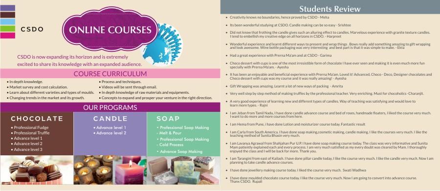 CSDO online courses