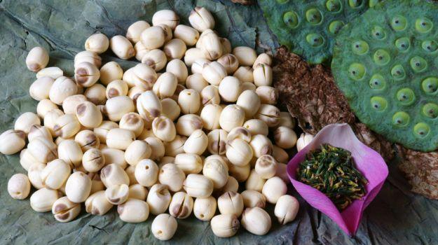 Intake Lotus Seed